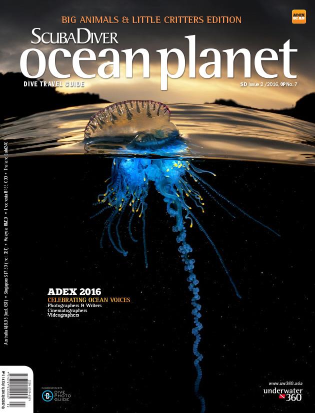 scuba-diver-ocean-planet-02-2016-emag-1